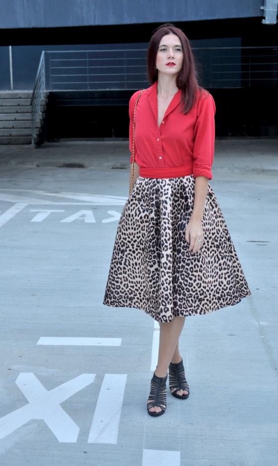 signaturebymm_leopard_skirt_choies9